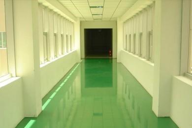 伊戈尔公司彩色密封固化剂工程